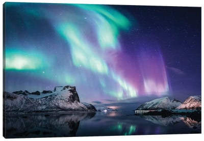 Northern Lights in Bergsbotn, Senja  Canvas Art Print