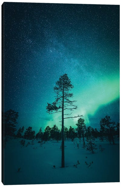 Senja Night Show Canvas Art Print