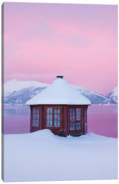 Cold Mornings In Senja Canvas Art Print