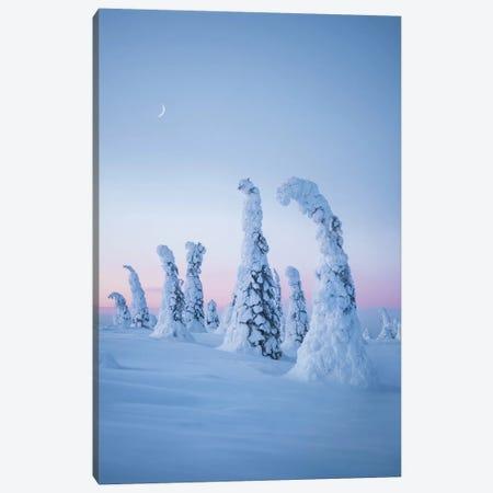 Frozen Dream 3-Piece Canvas #FSB73} by Steffen Fossbakk Canvas Print