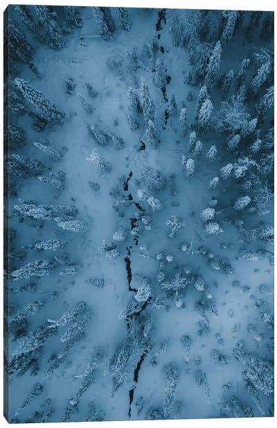 Frozen Forest, Finish Lapland Canvas Art Print