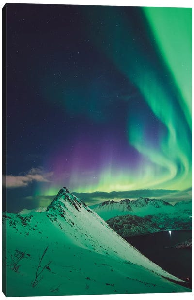 Nordic Dreams Canvas Art Print