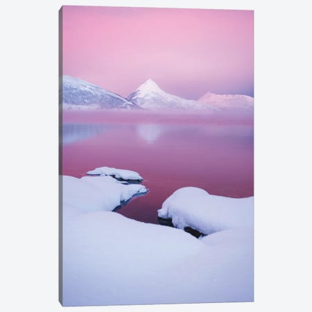 Pink Morning Canvas Print #FSB96} by Steffen Fossbakk Canvas Art