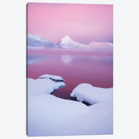 Pink Morning Canvas Print #FSB96} by Steffen Fossbakk Canvas Art