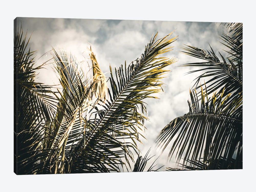 Palm Sky by Florian Schleinig 1-piece Canvas Art Print