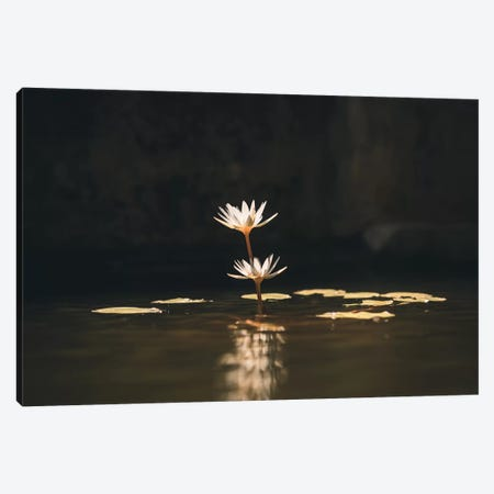 Rose Of Water Canvas Print #FSC33} by Florian Schleinig Canvas Wall Art