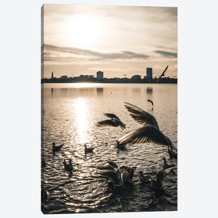 Seagulls VI Canvas Print #FSC39} by Florian Schleinig Canvas Art