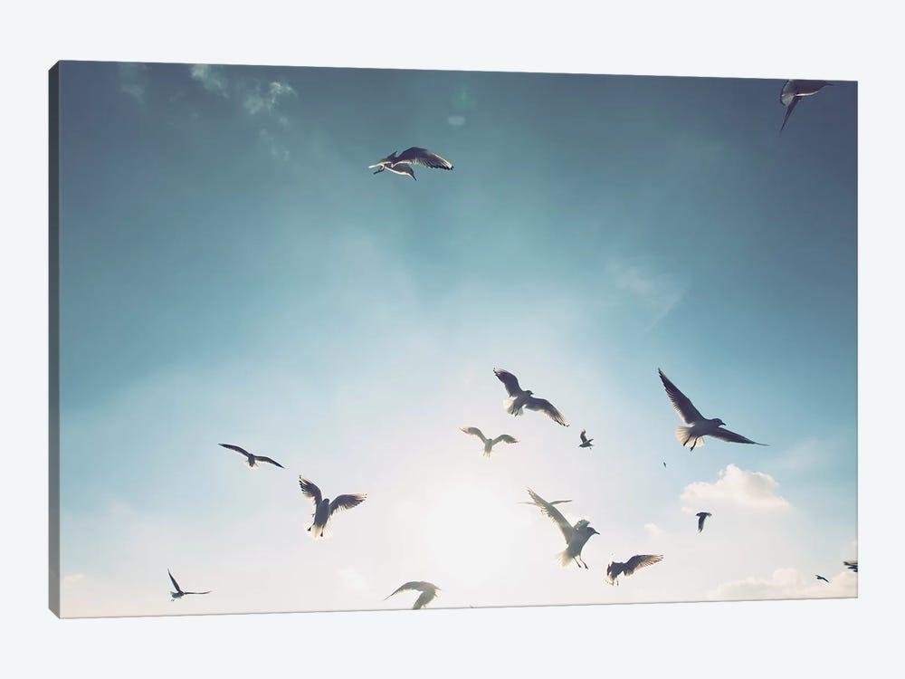 Seagulls VII by Florian Schleinig 1-piece Canvas Wall Art