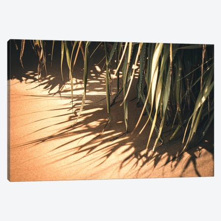 Beach Nature Canvas Print #FSC68} by Florian Schleinig Art Print