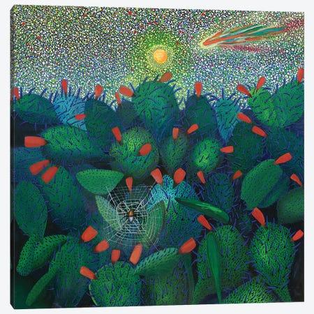 New Mexico Canvas Print #FSN11} by Francisco Sanabria Canvas Art Print