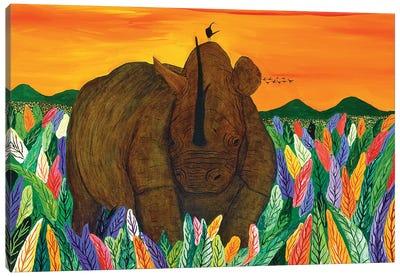 Rhinocironte Canvas Art Print