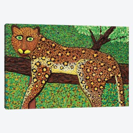 Happy Leopard Canvas Print #FSN18} by Francisco Sanabria Art Print