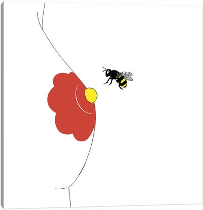 Pollinate Canvas Art Print