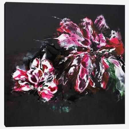 Sweet Nights Canvas Print #FWA21} by Françoise Wattré Canvas Art