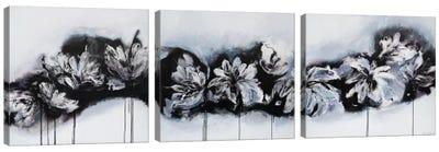 Beyond The Sky Triptych Canvas Art Print