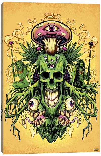 Marijuana Skull and Mushrooms Canvas Art Print