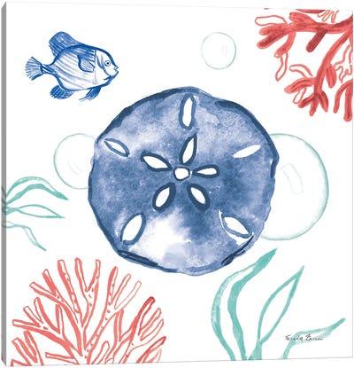 Coastal Jewels IV Coral Cove Canvas Art Print