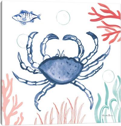 Coastal Jewels V Coral Cove Canvas Art Print