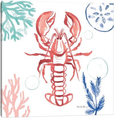 Coastal Jewels VI Coral Cove Canvas Art Print