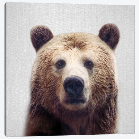 Bear Canvas Print #GAD12} by Gal Design Art Print
