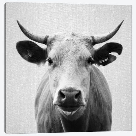 Cow In Black & White Canvas Print #GAD19} by Gal Design Art Print
