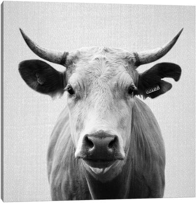 Cow In Black & White Canvas Art Print