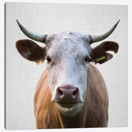 Cow Canvas Print #GAD20} by Gal Design Canvas Art