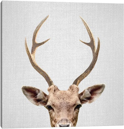 Deer Canvas Art Print