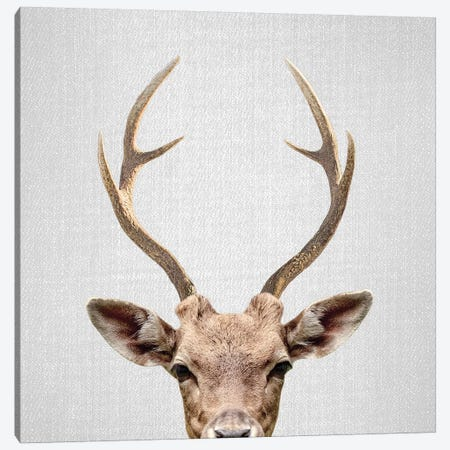 Deer Canvas Print #GAD22} by Gal Design Canvas Art