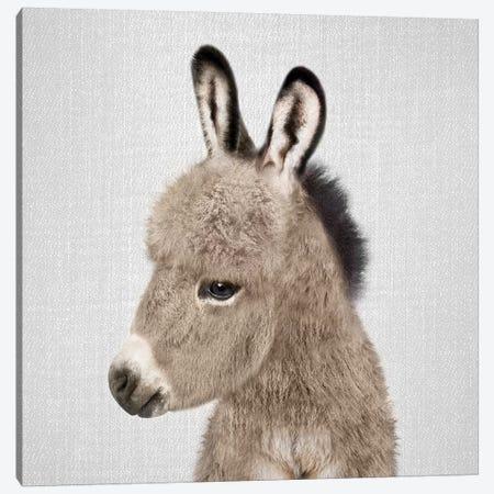 Donkey Canvas Print #GAD23} by Gal Design Canvas Artwork