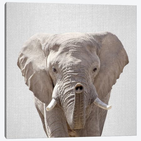 Elephant Canvas Print #GAD25} by Gal Design Art Print