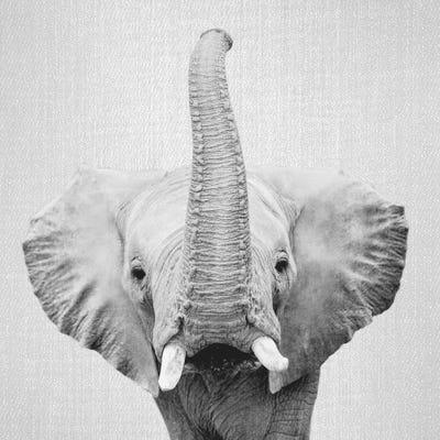 Elephant II In Black & White Canvas Art Print by Gal Design | iCanvas