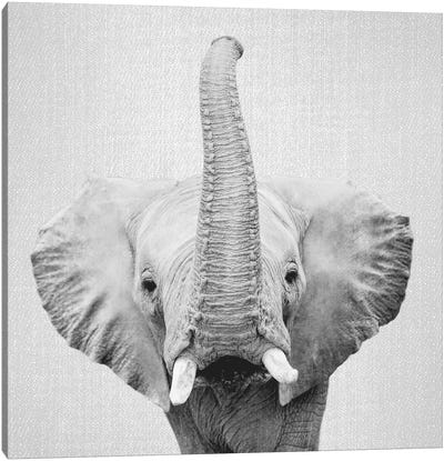 Elephant II In Black & White Canvas Art Print