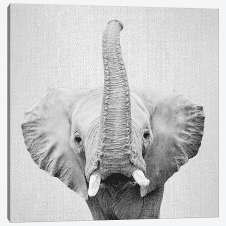 Elephant II In Black & White Canvas Print #GAD26} by Gal Design Art Print