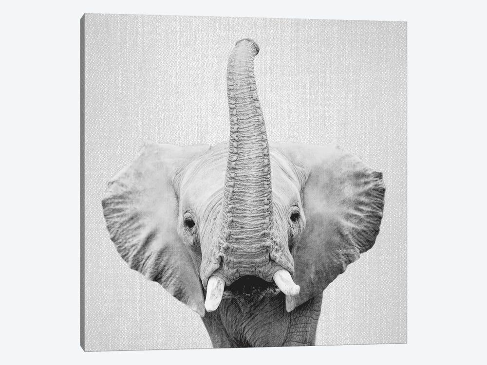 Elephant II In Black & White by Gal Design 1-piece Canvas Art