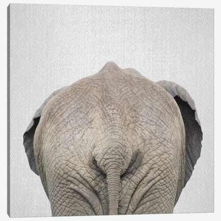 Elephant Tail Canvas Print #GAD28} by Gal Design Canvas Artwork
