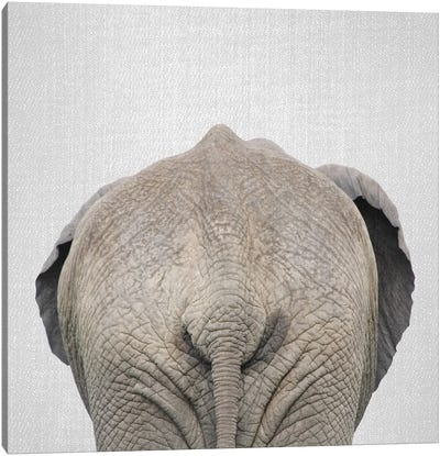 Elephant Tail Canvas Art Print