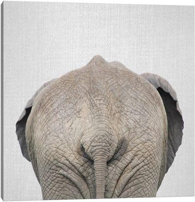 Elephant Tail Canvas Art Print