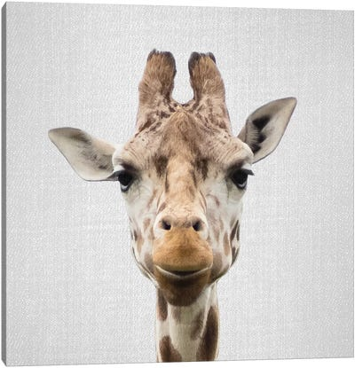 Giraffe I Canvas Art Print