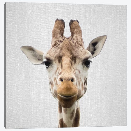 Giraffe I Canvas Print #GAD29} by Gal Design Canvas Art