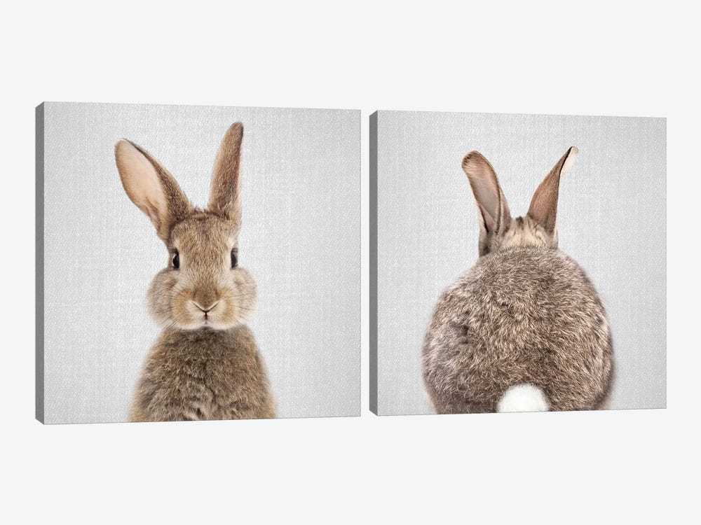 Rabbit Diptych by Gal Design 2-piece Canvas Artwork