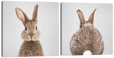 Rabbit Diptych Canvas Art Print