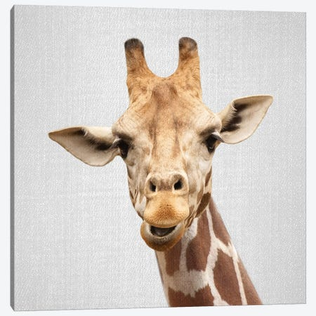 Giraffe II 3-Piece Canvas #GAD30} by Gal Design Canvas Art Print