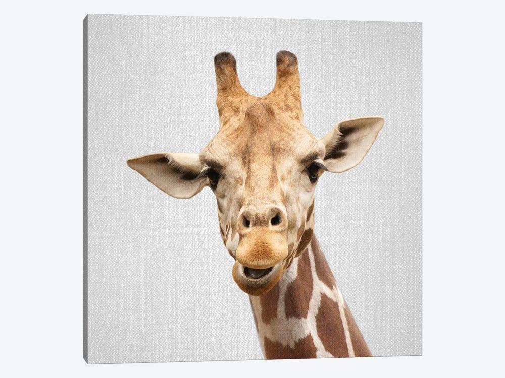 Giraffe II by Gal Design 1-piece Canvas Art Print