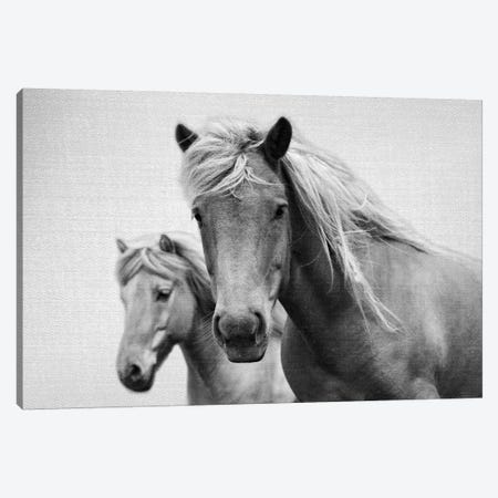 Horses In Black & White Canvas Print #GAD34} by Gal Design Canvas Art