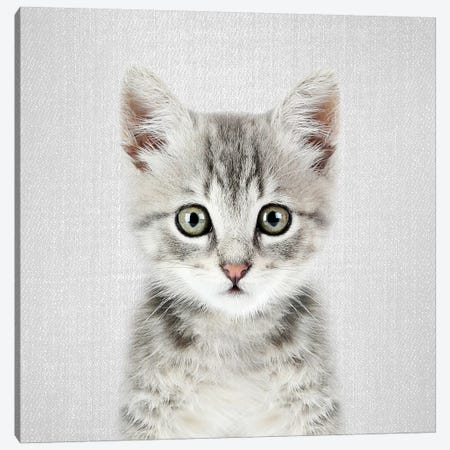 Kitten Canvas Print #GAD35} by Gal Design Canvas Art