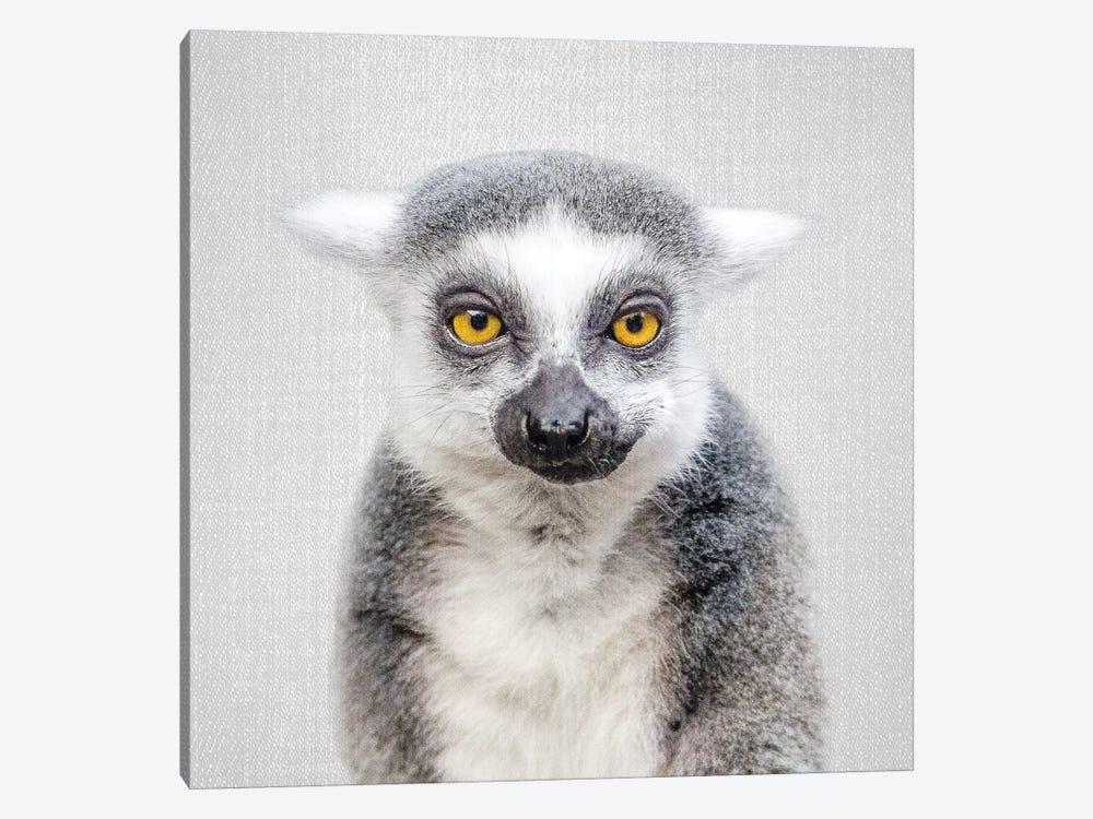 Lemur by Gal Design 1-piece Canvas Art