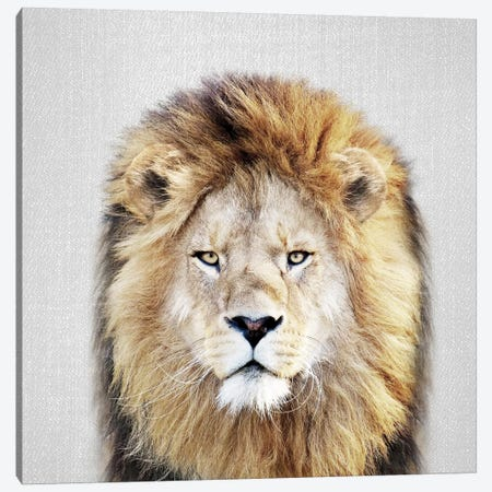 Lion Canvas Print #GAD39} by Gal Design Canvas Art Print