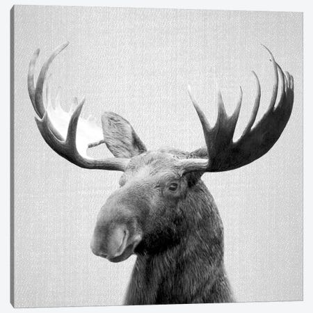 Moose In Black & White Canvas Print #GAD41} by Gal Design Canvas Wall Art