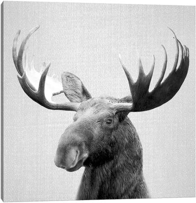 Moose In Black & White Canvas Art Print